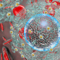 Nanomedicine and Pharmaceutical Nanotechnology May 04-05, 2020 Amsterdam, Netherlands