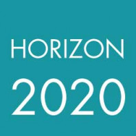 Survey horizon 2020