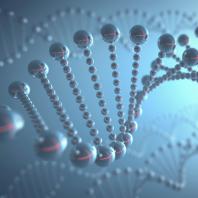 Copenhagen Nanomedicine Day 2016